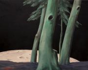 Der Mond - so nah